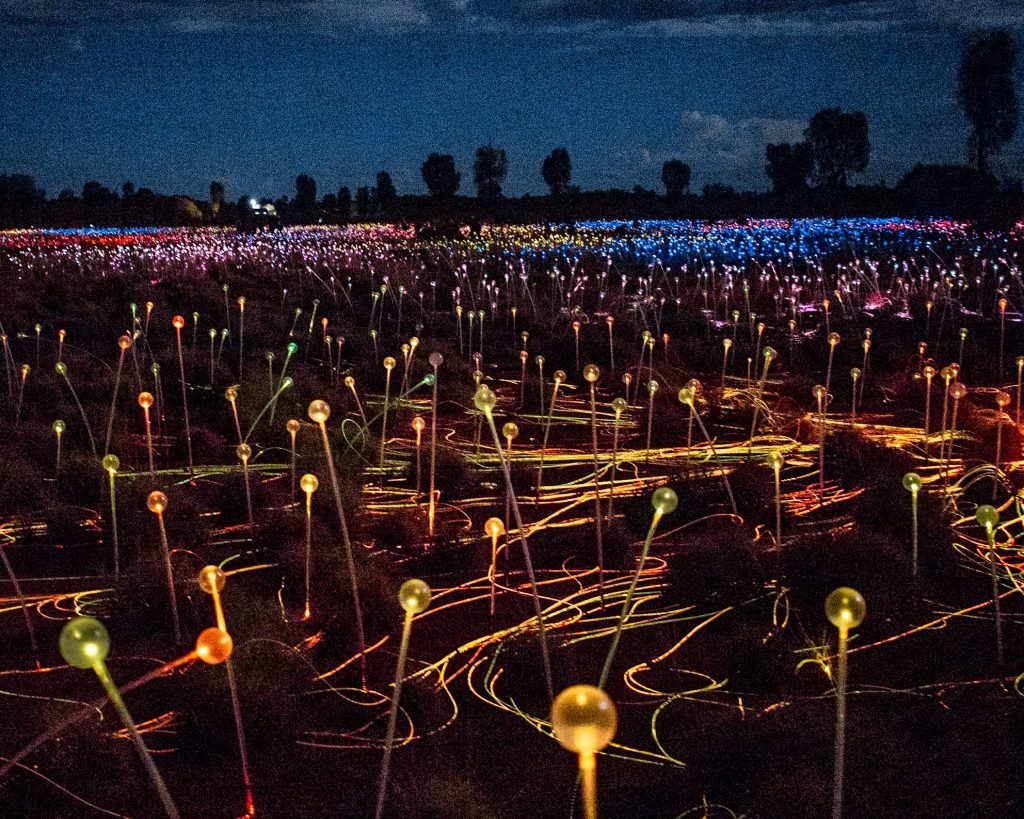 Field of light at night after our sunset dinner