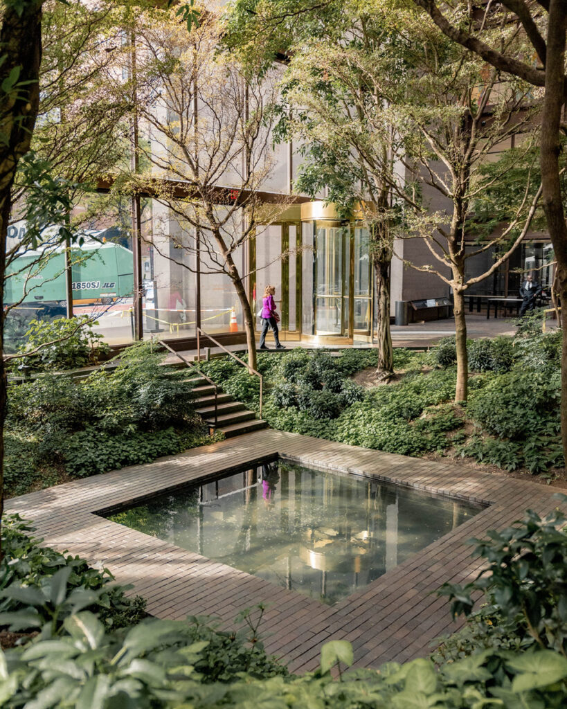 A light filled lobby with trees and shrubs with a small reflection pool