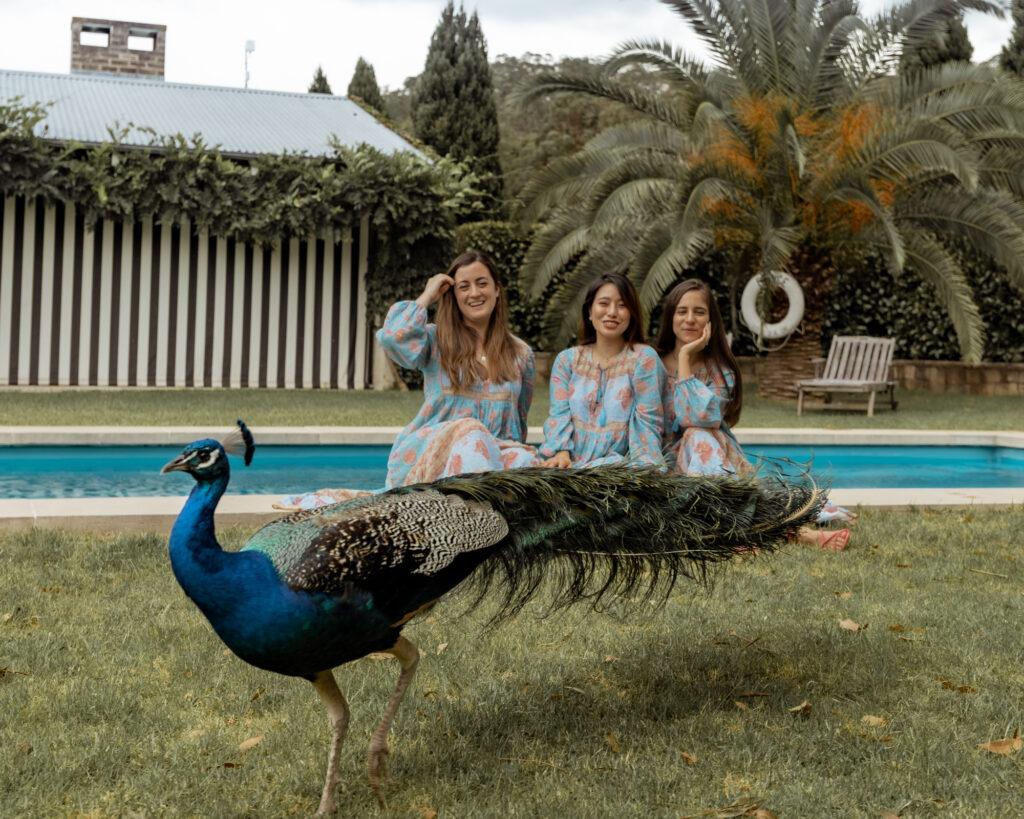 Girls getaway at Hunter Valley